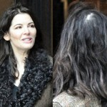 Nigella Lawson Requires Plastic Surgery for Hair Treatment