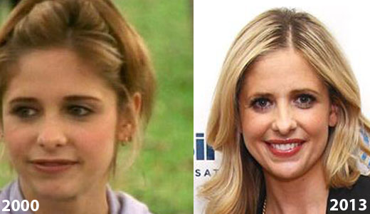 Sarah Michelle Gellar Nose Job Sarah Michelle Gellar Nose Job Before and After