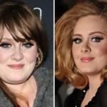 Did Adele Get a Nose Job ?